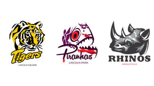 Metro Teams Announced for the 2015 Season