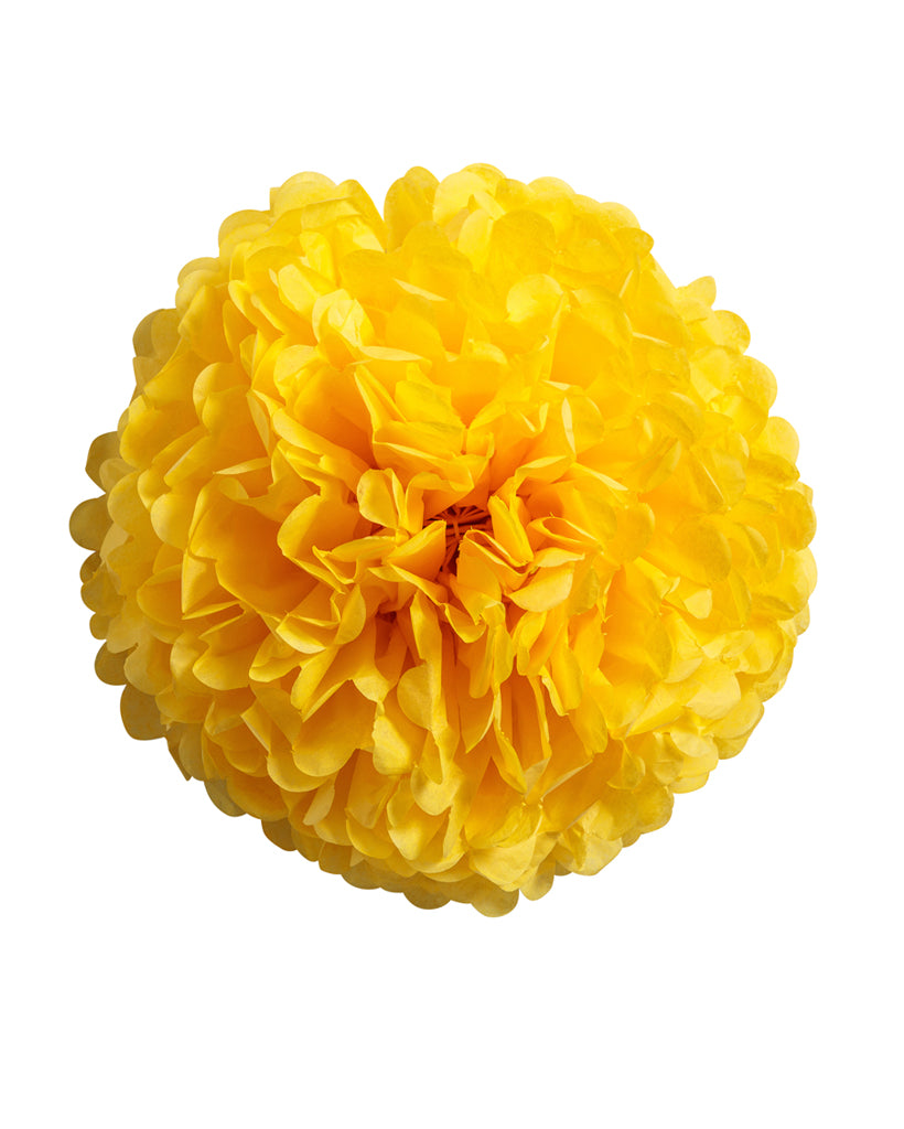 Yellow Tissue Paper Pom Pom