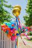 Small Rainbow Balloon Garland