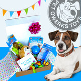 BarkDay Gift Box for the Top Dog of your Life