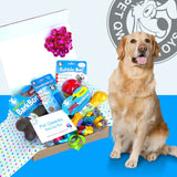 Ruff n' Tuff BarkDay Gift Box for the Tough Dog of your Life