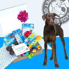 Ruff n' Tuff BarkDay Gift Box for the Tough Dog of your Life - Pet Qwerks | Interactive Dog Toys