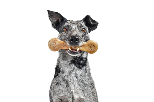 Flavorit Bone Bacon Infused Dog Chew Toy, Made in USA - Pet Qwerks | Interactive Pet Toys