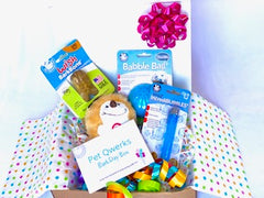 BarkDay Gift Box for the Top Dog of your Life - Pet Qwerks | Interactive Dog Toys