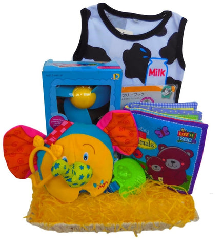 Baby Hamper - Classic Baby Essentials Package