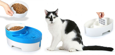 Automatic Cat Fresh Filtered Water Fountain And Food Dish + Free Shipping