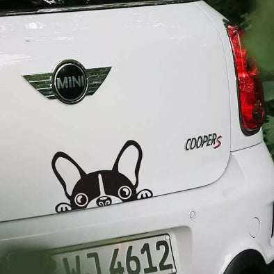 Mini Cooper Countryman Vintage Dog Bulldog Boston Terrier Sticker - Carsoda - 1