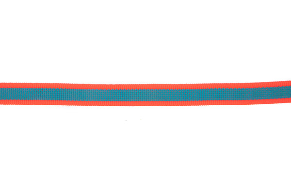 10M Roll Blue Ribbon with Fluorescent Coral Edging