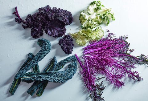 Kale and radicchio