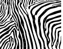 Load image into Gallery viewer, Zebra Stripes Print - Icing - ISA112 - Sugar, Frosting Paper, Sugar Art