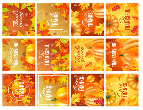 Thanksgiving 2.5 inch Orange Squares - Icing - ISA179
