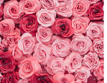 Load image into Gallery viewer, Pink Roses - Icing - ISA197