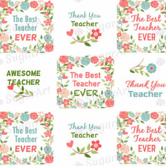 The Best Teacher EVER, Awesome Teacher! - ESA031