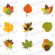 Load image into Gallery viewer, Leaves of Autumn Colors - SA45-Sugar Stamp sheets-Sugar Art