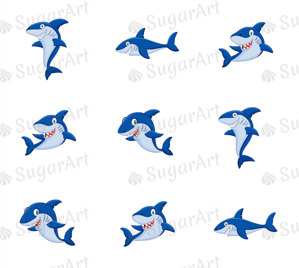 Shark collection meringue transfer sheet
