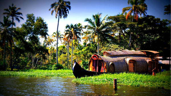 Alleppey (House boat)_and-Coconut trees