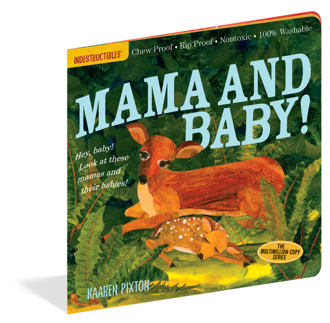 Mama and Baby! Indestructibles Baby Book