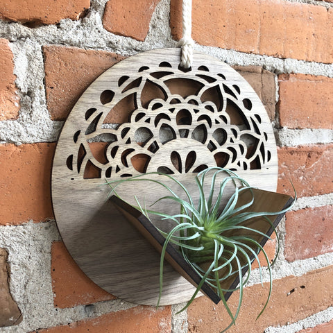 Handmade Wooden Air Plant Wall Decor - The Milk Moustache