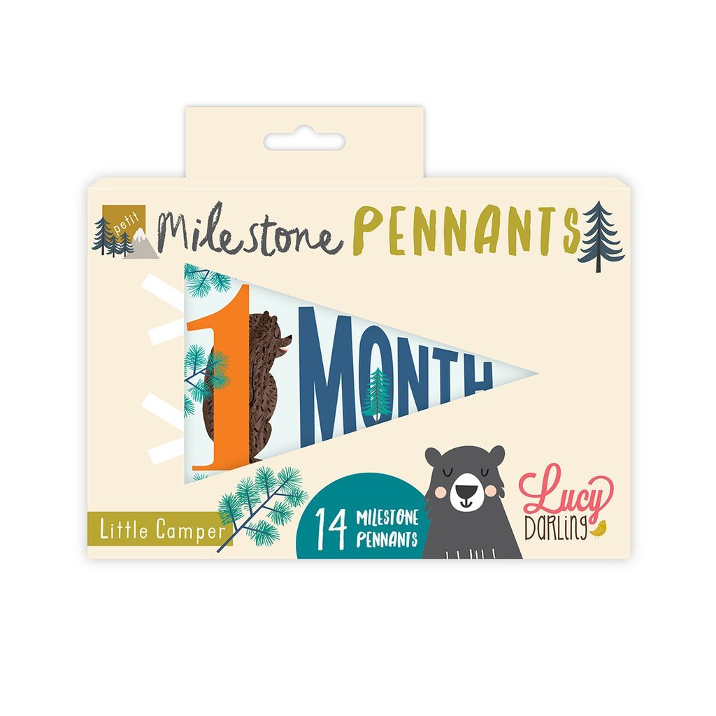 Lucy Darling Little Camper Petit Milestone Pennant Set