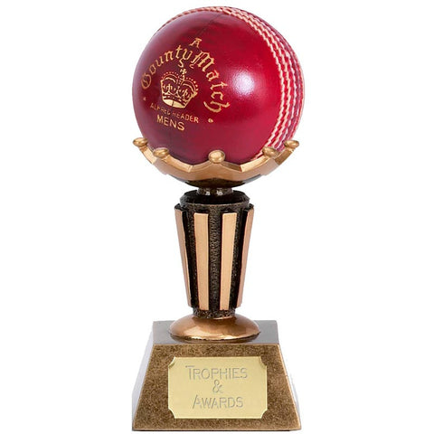 Cricket Ball Display Stand - Ace Trophies