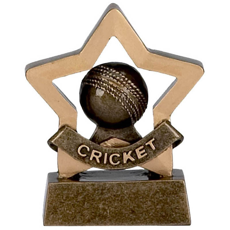 Cricket-ball-mini-star-trophy-Ace-Trophies