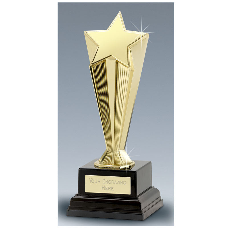 Cast Metal Recognition Star - Ace Trophies