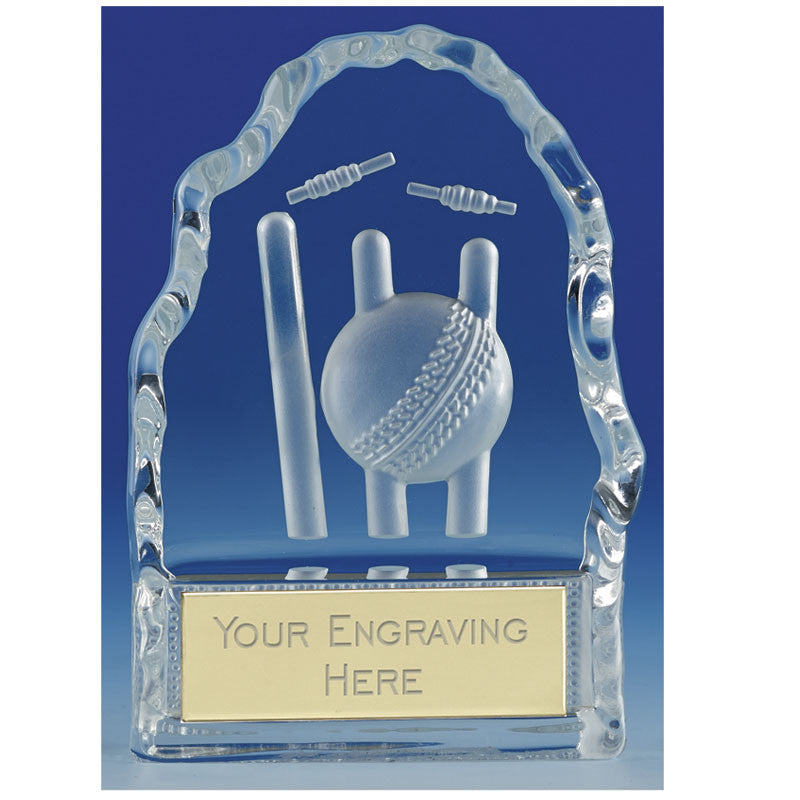 Echo Cricket Glass - Ace Trophies