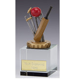 Flexx Merit Crystal Cricket Award - Ace Trophies