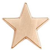 16mm Star Pin Badge - Ace Trophies
