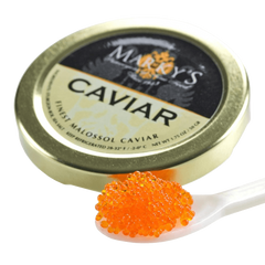 Tobiko Orange caviar