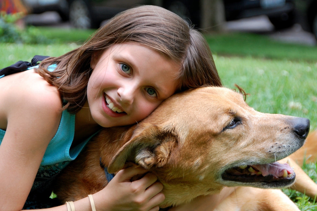 Ten Dog Breeds that Are Great for Families