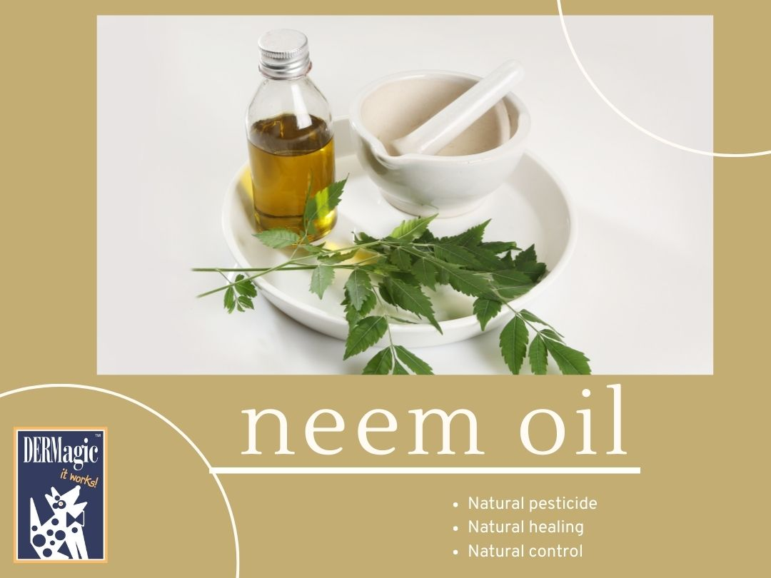 Neem Oil Benefits