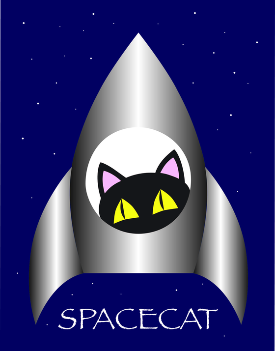 Spacecat wear