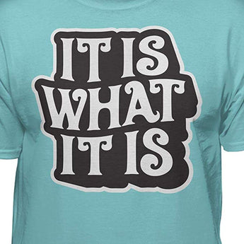 It is What It is Funny T-Shirt