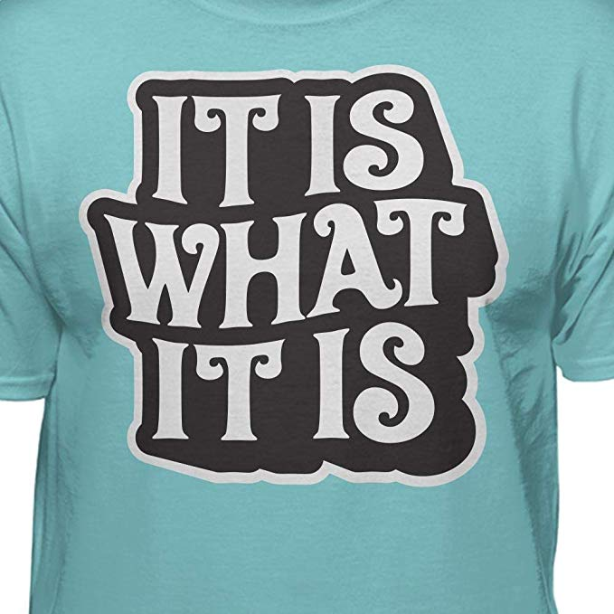 68cf0d2e40be4 It is What It is Funny T-Shirt
