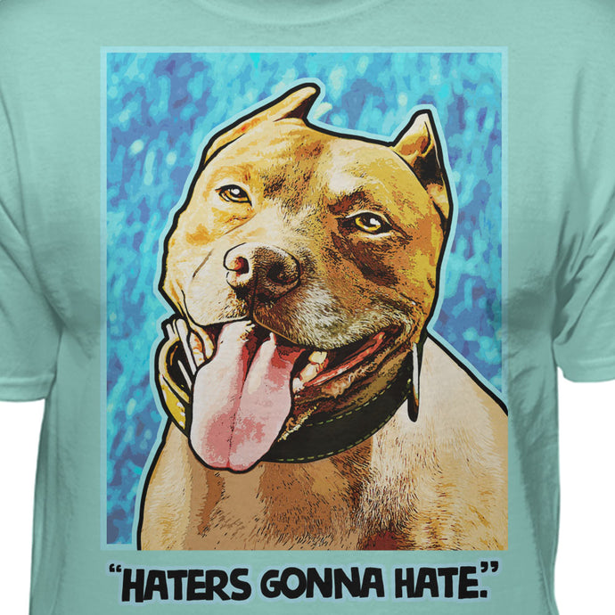 Pitbull Haters Gonna Hate Pop T-shirt