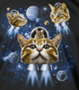 Cat and Mouse in Space