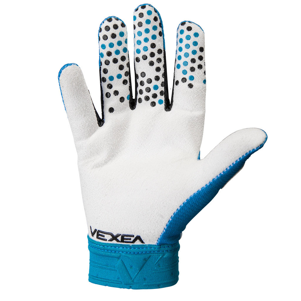 VX-Y Gloves Blue Fade / White