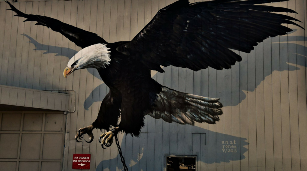 """Chained Eagle"" Graffiti"