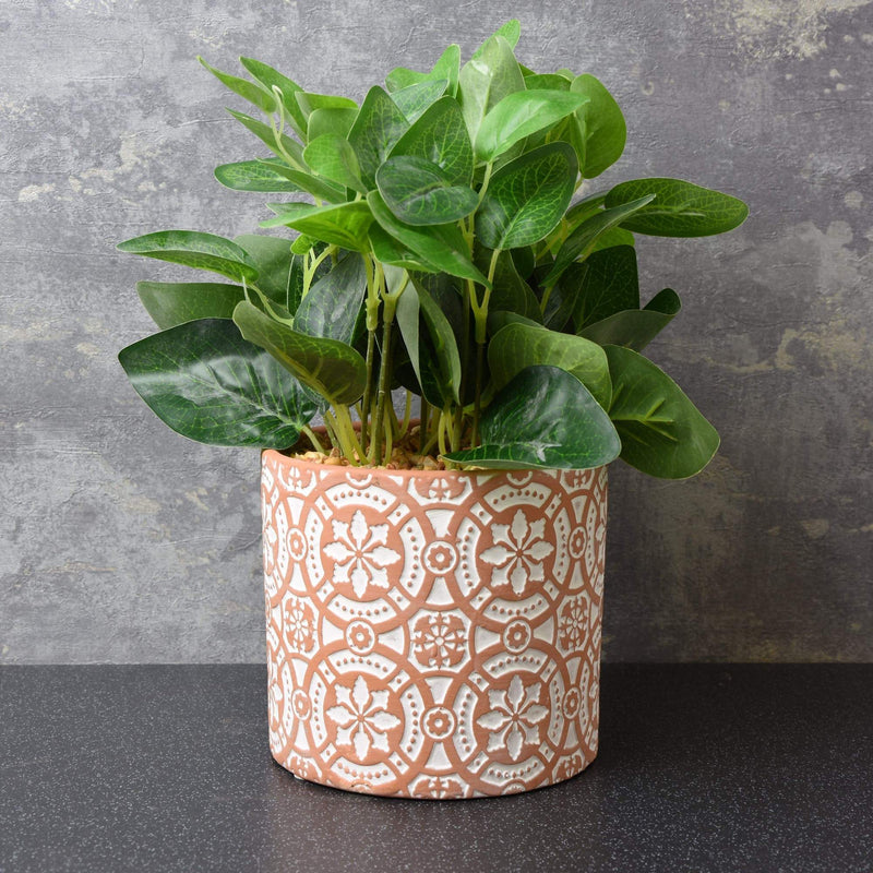 Green Plant in Cement Pot with Moroccan Tile Print Red 27cm