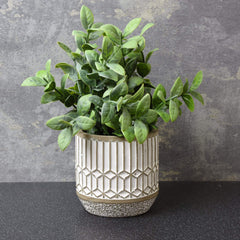 Mosaic Leaves in Cement Pot Grey 22.5cm