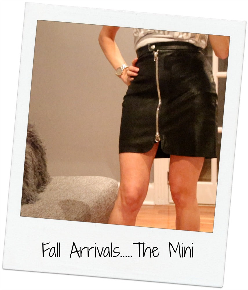 How To Style A Mini Skirt For Fall....