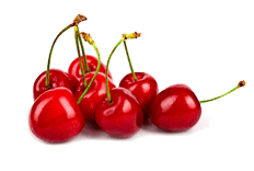Prunus cerasus (bitter cherry) fruit extract