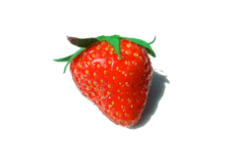 Fragaria vesca (strawberry) fruit extract