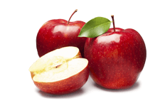 Pyrus malus (apple) fruit extract