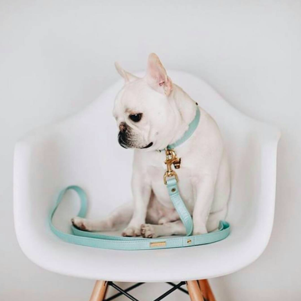 FRENCHIE CHARM