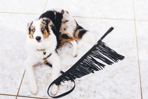 The HOUND Fringe Leash in Black Leather