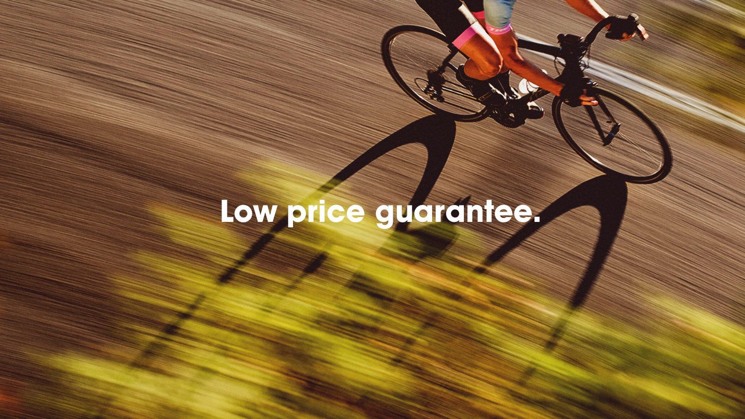Low price guarantee at Trek Bicycle Tustin