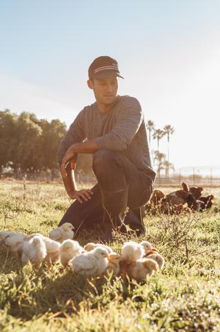 Farmer Paul on the farm and Pasturebird with his pasture-raised chickens
