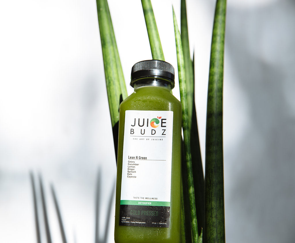 Model Meals Blog | Whole30 -- Juice Budz